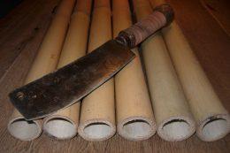 Bambusrohre - AUsgangsmaterial